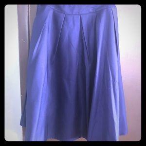 NWT blue skirt